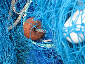 fishing-net-557249_1280.jpg