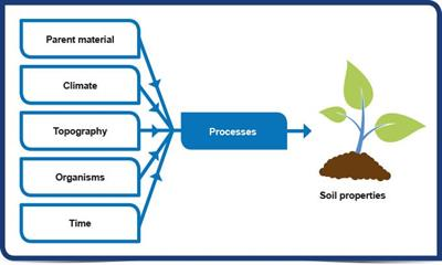 soil-formation-in-Indian-Conditions.jpg