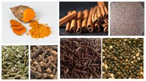 spices of india 1.jpg