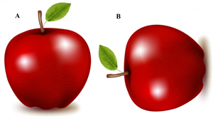 red_apples.png