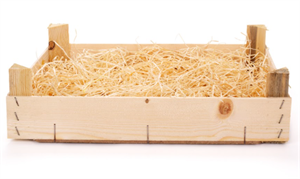 straw bed 2021-01-04 151026.png